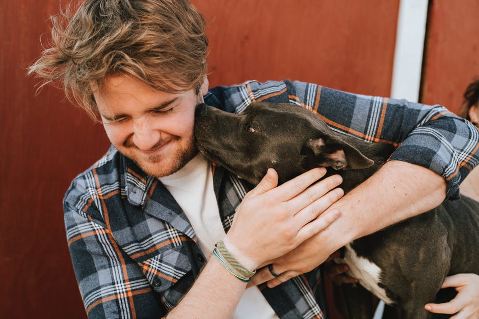 Dating With Pets your partner and your pet