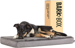 Barkbox Dog Bed | Memory Foam Mattress 3 High-Density for Orthopedic Joint Relief - Machine Washable Crate Mat with Removable Cover and Water-Resistant