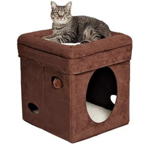 Cat House - Cat Condo