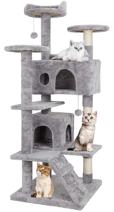 Cat Tree Stand House