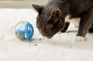Catit treat ball