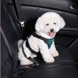 Dog Car Harness Seatbelt