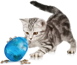 Egg Cersizer - treat toy for cats