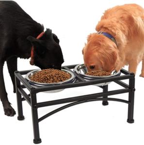 Raised Double Dog Bowls