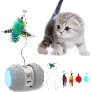 Robotic Interactive Cat Toy
