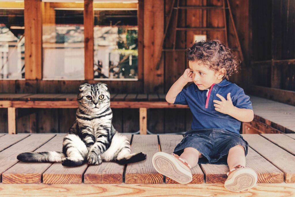 cat and a child on the porch