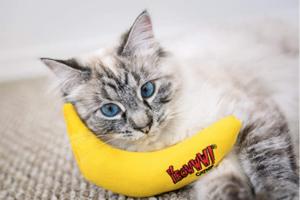 Yeowww Banana Cat Toy