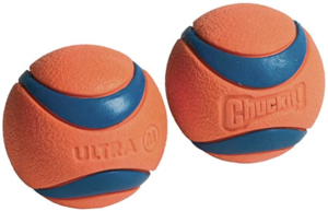 chuckit! rubber ball for dogs