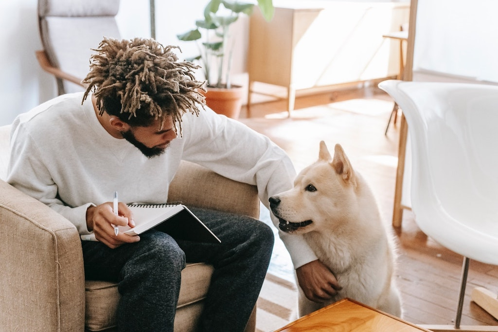 do dogs understand words - man talking to a dog