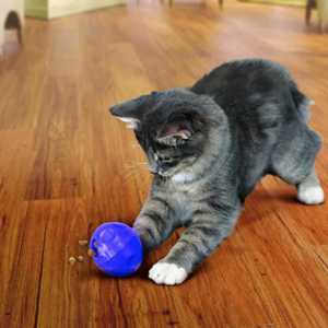 kitty treat dispenser