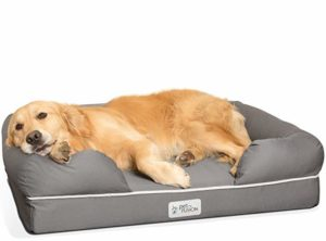 large dog memory foam bed