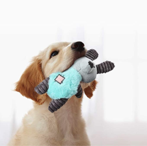 squeaker toy for dog puppy mishi