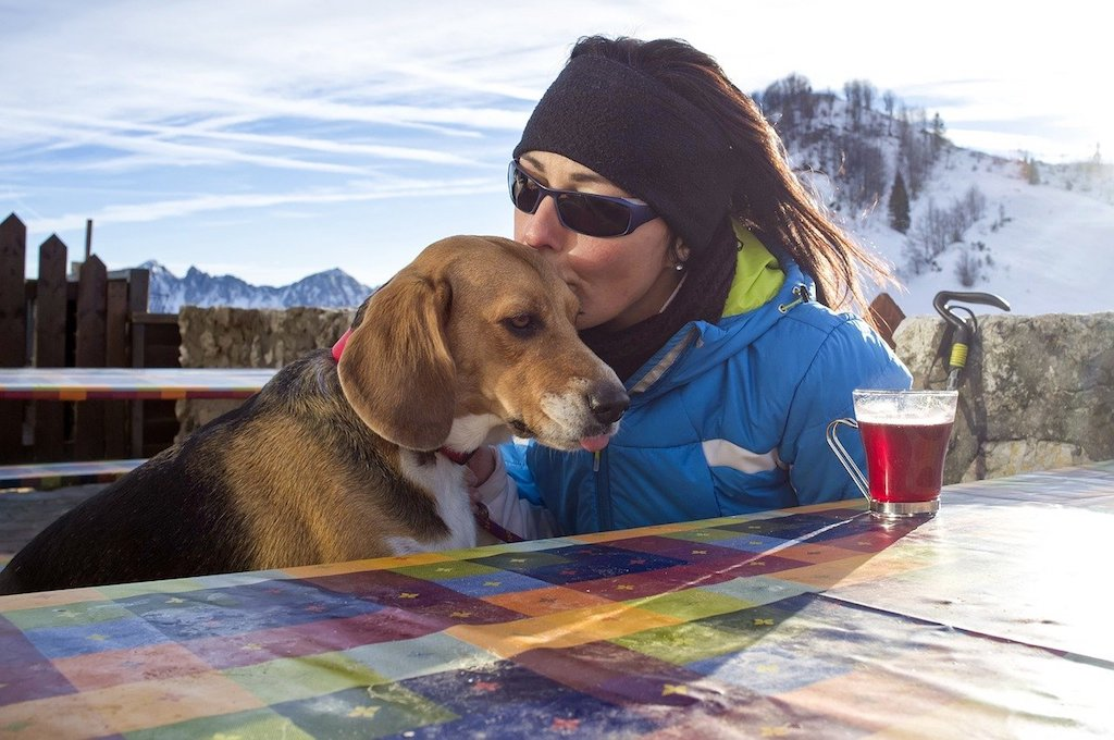 tips for walking your dog in the mountain