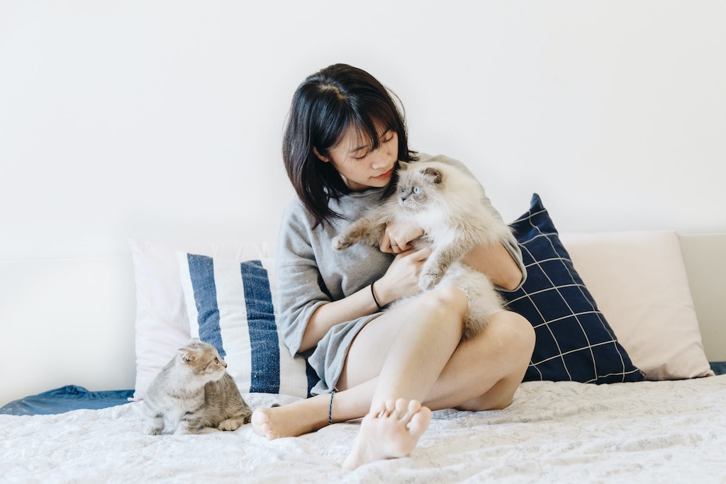 woman holding and hugging a cat